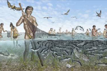 illustration of people fishing with a large net